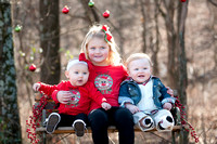 Knox-Christmas Mini Session