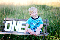 Easton Brown-One Year Old Session  July 10, 2014